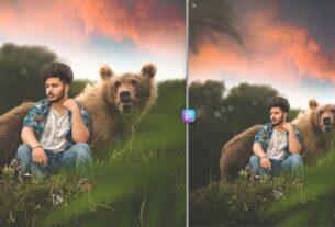 Bear editing background