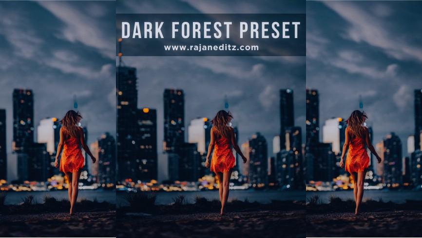 Dark forest preset thumbnaail download