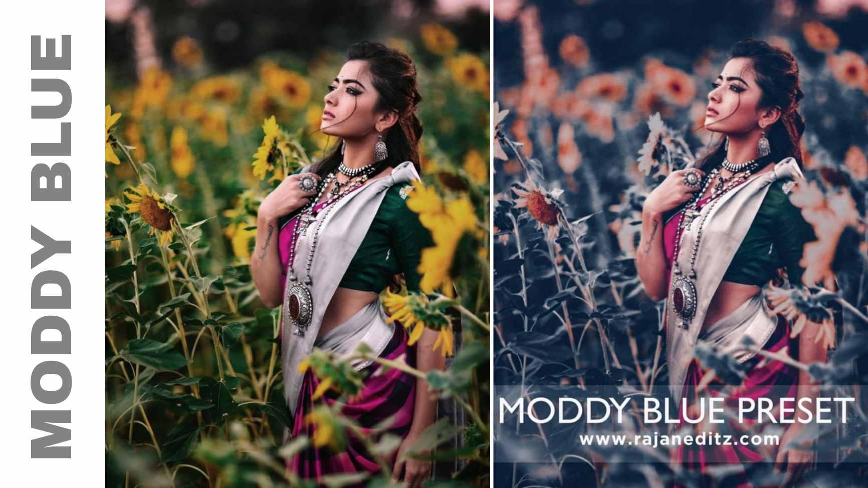 Moddy blue preset THUMBNAIL
