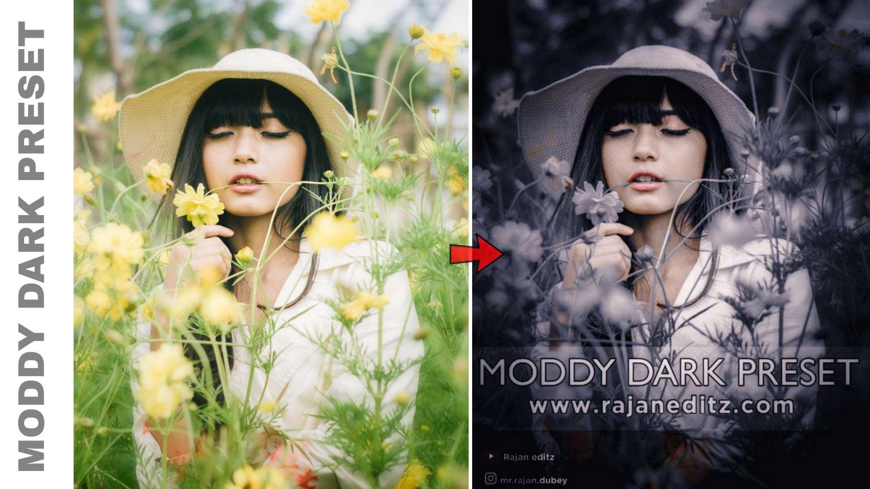 Moddy Dark Preset __ lightroom black tone preset download free