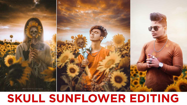 sunflower editing
