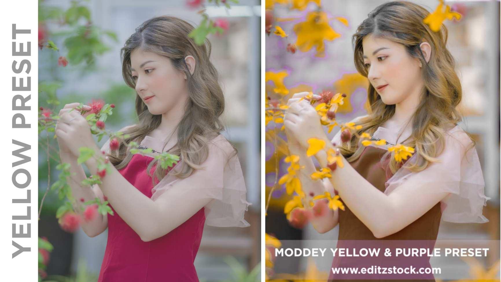 Yellow and purple preset